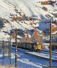 Waiting Patiently (jamesbelmont) Tags: unionpacific ogdenlocal echo utah railroad railway train emd sd70m evanstonsubdivision