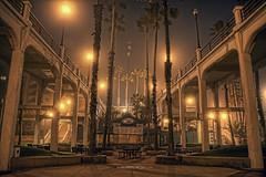 Pier Fog 7-1-29-19 (rod1691) Tags: oceanside california beach pier fog palms