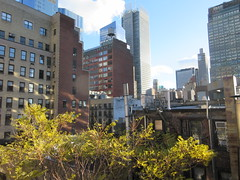 2018 November Dropping Leaves Tree 4215 (Brechtbug) Tags: 2018 november dropping leaves tree virtual clock tower from hells kitchen clinton near times square broadway nyc 11032018 new york city midtown manhattan fall autumn weather building dark low hanging cloud hell s nemo southern view ny1rain