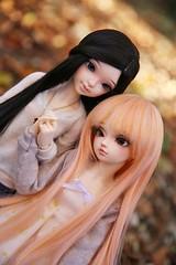 Like Sisters ♥ (SunShineRu) Tags: minifee mnf sarang sarang14 14 2014 chou slim msd fairyland bjd ball jointed doll dolls autumn fall sunlight friends sister love