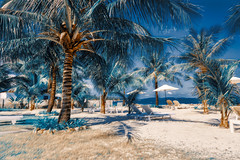 Golden Coast, Phu Quoc, HDR (NguyenMarcus) Tags: landscape aasia worldtracker beach hdr bluesky nature phúquốc kiêngiang vietnam vn