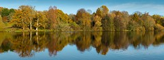 Autumn panorama (James Waghorn) Tags: autumn nikon d7100 water maidstone reflections tamronsp70300f456vcusd panorama lake kent motepark tree colourful england peace calm tranquility