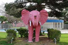 Pink Elephant (320-ROC) Tags: pinkelephant elephant diamondinnmotel lasvegas nevada motel roadsideamerica