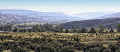 Smoke Gets in Your Eyes (Eclectic Jack) Tags: eastern oregon trip october 2018 rural agriculture farm farming autumn fall mountains smoke morning dawn wide angle wideangle shot picture photo