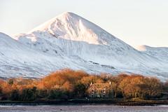 Sunrise at Low Tide (mickreynolds) Tags: 2019 croaghpatrick ireland nx500 snow wildatlanticway sunrise morning irelansd eireann trees westport reek cold white