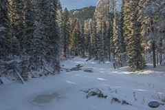 A Winter's stream muffled under snow 2019 (TheArtOfPhotographyByLouisRuth) Tags: awintersstreammuffledundersnowmccallidahosnowwinter2019 tamarack ski snow snowscapes snowywinter snowpix snowbeauty tree travelphotography trees treemendous tranquil freeze frost frozen artofimages amazingcapture nikon nikond810 nikonprime nikon24mmf18 lighting gentlelight flickrglobal road forest wood mountain landscape wintryscene thisshouldbeapostcard ilovemynikon flickrexpertgroup pronaturaandlandscape thebestshots usrivers creeks waterfallsandlakes inspiringcapturesandart view perspective pinetrees talltrees snowcoveredtrees frozenponds frozenstreams flickrwinter2019 supremeimages professionalwinterphotos winter2019 idahowinterphotos bestshots