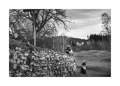 Acolytes (Paphylo) Tags: summilux50mm countryside acolytes monochrome southernbohemia leicam10 outdoor blackandwhite countrylife boys document 400asa