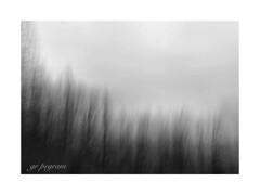 Iphoneart (GR167) Tags: iphoneart iphoneography iphone icm nc mountains bw blackandwhite blur slowshutter monochrome foggy fog dreary gloomy