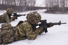 Canadian Patrol Concentration 2016 (Canadian Army   Armée canadienne) Tags: armes army arméedeterre day extérieur hommes horizontal international jour males neige outdoors snow weapons wainwright ab canada ca