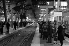 116 -1crpvibfwlcon1stpf (citatus) Tags: passengers waiting eastbound go train commuter commuters union station toronto canada fall evening 2018 pentax k3 ii bw