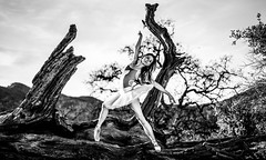 Malibu Canyons Pretty Classical Ballet Ballerina Goddess Pointe Shoes Leotard Tutu! Outdoors Nature Ballet Ballerina Woodlands Photography! Pretty Sandy Hair Brown Eyes Ballerina Ballet Dancer! Sony A7R Carl Zeiss Sony 55mm F1.8 Sonnar T FE ZA Prime Lens (45SURF Hero's Odyssey Mythology Landscapes & Godde) Tags: malibu canyons pretty classical ballet ballerina goddess pointe shoes leotard tutu outdoors nature woodlands photography sandy hair brown eyes dancer sony a7 r carl zeiss 55mm f18 sonnar t fe za full frame prime lens