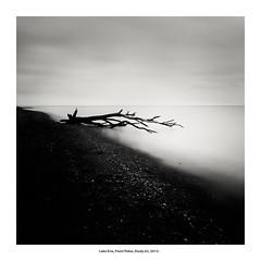 Lake Erie, Point Pelee, Study 62, 2015. (Paul Turgeon) Tags: paulturgeon photography landscape longexposure minimalism monochrome blackandwhite moon lakeerie canada windsor