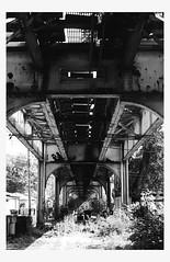 Lincoln Square, Chicago (Poinciana82) Tags: 50mmf18 analog film el ae1 trix400 chicago
