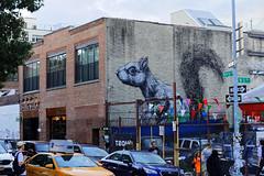 Squirel (OliveTruxi (2 Million views Thks!)) Tags: newyork nyc nychos roa streetart urbanart ny unitedstates