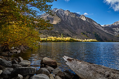 In the morning light (AgarwalArun) Tags: sony a7m2 sonyilce7m2 landscape scenic nature views easternsierra lakes leaves autumn fallfoliage mountains inyonationalforest convictlake lake
