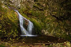 Autumn Falls (beatriceverez) Tags: waterfall blackforest germany forest rock water fall herbst autumn