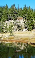 McCauley Cabin, Tulolumne Meadow, Yosemite 8-10 (inkknife_2000 (9.5 million views)) Tags: easternsierranevada yosemitenationalpark california usa landscapes dgrahamphoto creek mountainriver rocks waterreflections calmwater tuolumnemeadow spring forest trees river boulders granitedomes lembertdomefallentrees oldgrowth mccauleycabin lembertdome
