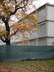 Der Baum. / 12.11.2018 (ben.kaden) Tags: berlin lichtenberg friedrichsfelde amtierpark baum architektur architekturderddr 2018 12112018 herbst