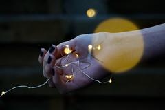 #photography #picoftheday #autumn #piclove #photographers #fotografie #bokeh #herbst #happy #light (Emmarb34) Tags: piclove picoftheday photographers fotografie herbst light happy bokeh autumn photography