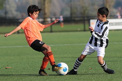 """HBC Voetbal • <a style=""""font-size:0.8em;"""" href=""""http://www.flickr.com/photos/151401055@N04/45003022064/"""" target=""""_blank"""">View on Flickr</a>"""