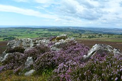 Stiperstones, Shropshire (Seventh Heaven Photography *) Tags: stiperstones shropshire nikon d3200 heather erica wid countryside nature landscape rocks rock hill sky blue fields trees