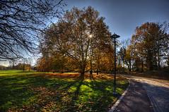 06-Britzer Garten_181116_N- 04 (sigkan) Tags: deutschland berlin britzergarten hdr nikond700 nikon2485mmf284