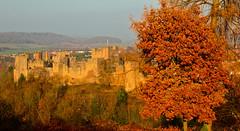 LUDLOW CASTLE (chris .p) Tags: ludlow castle shropshire nikon d610 view uk autumn 2018 capture viewpoint england november history landscape tree autumncolour
