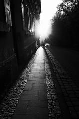 Three lights (stefankamert) Tags: light sun street car shadows grain noir noiretblanc blackandwhite blackwhite sidewalk ricoh gr grii tübingen stefankamert textures backlight