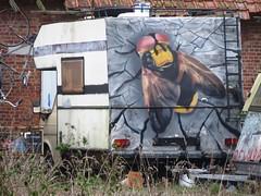 Cee Pil / Overdam - 25 nov 2018 (Ferdinand 'Ferre' Feys) Tags: gent ghent gand belgium belgique belgië streetart artdelarue graffitiart graffiti graff urbanart urbanarte arteurbano ferdinandfeys ceepil bestof2018be