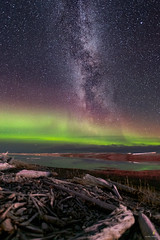 My first shot I ever took of the Milky way (Chriskellyphotography) Tags: beach northwestterritories nature nikkor20mm northernlights nightsky abovethearcticcircle aurora auroraborealis arcticocean driftwood skies landscape ocean coast tuktoyaktuk reflection rockbeach water milkyway astrophotography
