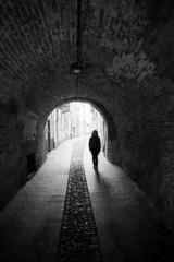 Tunnel of love - Pavia - November 2018 (cava961) Tags: tunnel pavia analogue analogico monochrome monocromo bianconero bw