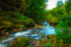 Glen Lyn Gorge (C.G.Photos) Tags: vacation england unitedkingdom gb lynmouth exmoor gorge