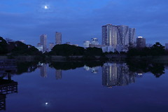 Tokyo Full Moon (seiji2012) Tags: 東京 月 反射 浜離宮恩賜庭園 池 庭園 moon tokyo japan reflection blue night happyplanet asiafavorites