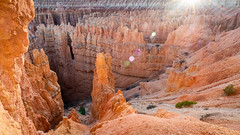 Bryce canyon (S@ndrine Néel) Tags: brycecanyon utah america amérique usa us etatsunis unitedstates néelsandrine