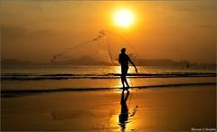 Pescador de Ilusões Foto Marcus Cabaleiro Site: https://marcuscabaleirophoto.wixsite.com/photos Blog: http://marcuscabaleiro.blogspot.com.br/              IIOIIOIIOIIOIIOIIOIIOII #marcuscabaleiro #santos #brasil #pontadapraia #praia   #fotografia #pordoso (marcuscabaleiro4) Tags: verão brazil pontadapraia pordosol praia photo brasil orla reflexo fotografia nikon sol marcuscabaleiro pescadordeilusões photographer tarrafa pescador astrorei photography santos