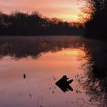 A New Year Dawns thumbnail