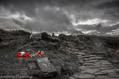 Remembrance Easby Moor (Antony Fleming) Tags: remembrance poppy easby moor