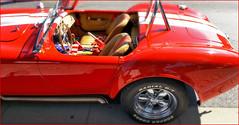 AC Cobra, Rétrofolies 2018 de Spa, Belgium (claude lina) Tags: claudelina belgique belgium belgië spa rétrofolies rétrofolies2018despa voiture car oldcar vieillesvoitures accobra