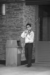 Violinist (tourtrophy) Tags: meyer optik goerltiz 135mm f28 orestor meyeroptikgoerltiz135mmf28orestor violinist californiasgreatamerica musician violin garbagebin siliconvalleysymphony greatamerica