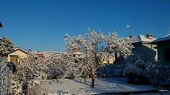 camminando (archgionni) Tags: inverno winter case homes cielo sky azzurro blue alberi trees rami branches foglie leaves giardini gardens neve snow