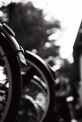 Pip (Yosh the Fishhead) Tags: olympusom olympusom2n om2n om2 film filmphotography filmnoir blackwhite blackandwhite bw monochrome fomapan foma fomapan100 50mm macro50mmf35 zuikoautomacro50mmf35 zuikomacro50mmf35 zuikomacro taipei taiwan bike bicycle wheel dof bokeh olympus
