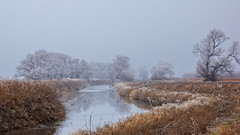 Winter on the Refuge (lennycarl08) Tags: lowerklamathnwr