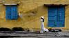 Vietnam - Trinh à Hoi An. (Gilles Daligand) Tags: vietnam hoian rue street mur jaune volets bleu femme tunique pantalon blanc