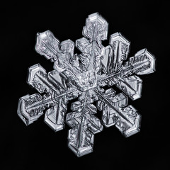 Snowflake-a-Day No. 43 (Don Komarechka) Tags: snow snowflake ice crystal nature natural fractal science physics weather meteorology climate symmetry focusstacking water frozen mineral mineralogy winter sky mpe