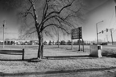 The Starkness of Winter (kendoman26) Tags: monochrome happymonochromemonday blackandwhite nikon nikond7100 tokinaatx1228prodx tokina tokina1228 morrisillinois