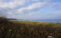 AT THE BALTIC SEA - WEISSENHÄUSER BEACH (Fimeli) Tags: nature strand beach ostsee wintertime balticsea weissenhäuserstrand germany