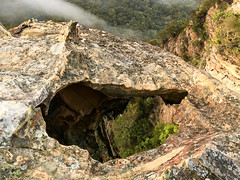 Yes, that hole goes all the way through ([S u m m i t] s c a p e) Tags: rock summer bluemountains nativeplants katoomba