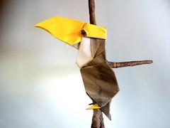 Tucán - Chen Wi Lin (Rui.Roda) Tags: origami papiroflexia papierfalten toucan tucano tucán chen wi lin