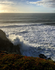 Montara, CA (monique.m.kreutzer) Tags: ocean sea seaspray rocks sky clouds surf water iceplant waves