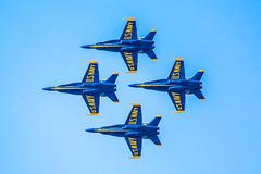 Blue Angels (Thomas Hawk) Tags: america bayarea blueangels california marinadistrict navy sfbayarea sanfrancisco usnavy usa unitedstates unitedstatesnavy unitedstatesofamerica westcoast airplane military fav10 fav25